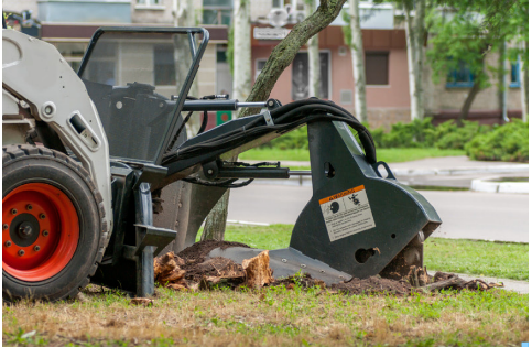 Picture of stump grinding machine in New Orleans, La
